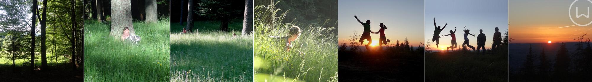 Wirkwege Hongar Attersee Naturwege Coaching